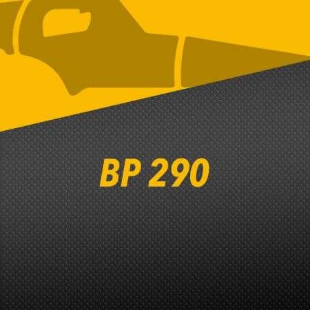 BP 290
